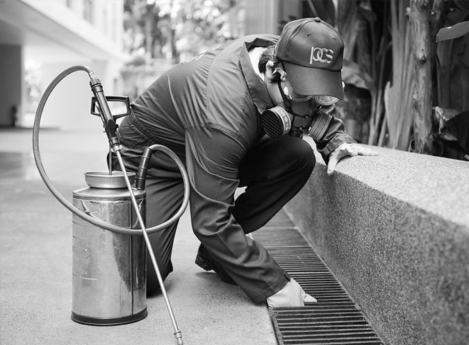 HACCP Pest Control Services