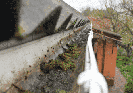 Gutter Cleaning & Inspection